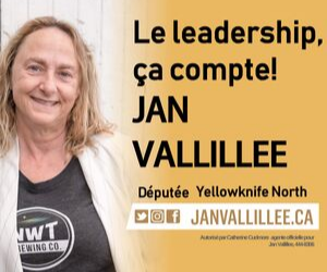 Elections2019JAnVallillee
